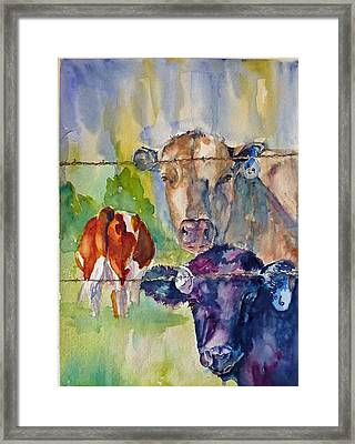 Framed Print featuring the painting Cow Bingo by P Maure Bausch