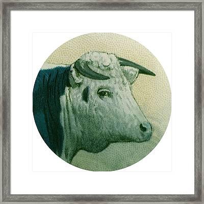 Cow IIi Framed Print by Desiree Warren