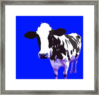 Cow In A Blue World Framed Print by Peter Oconor