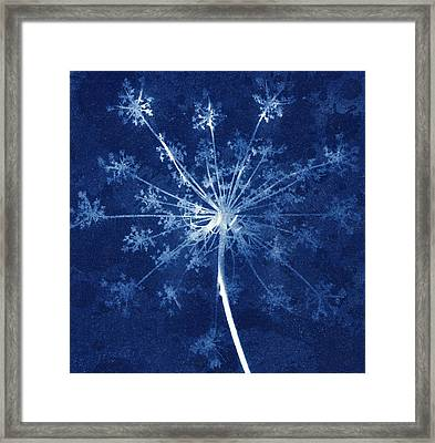 Cow Parsley Framed Print by Elspeth Ross
