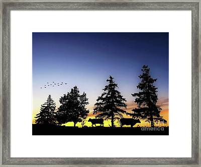 Cow Silhouette Framed Print by Anthony Djordjevic