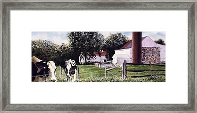 Cow Spotting Framed Print by Denny Bond