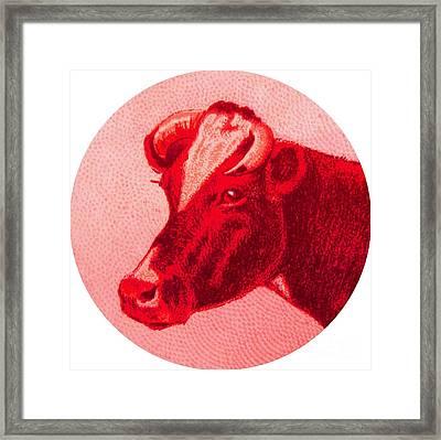 Cow Vi Framed Print by Desiree Warren