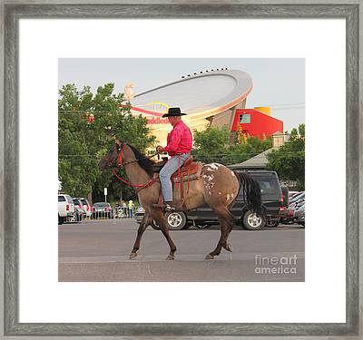 Cowboy And Saddledome Framed Print by Donna Munro