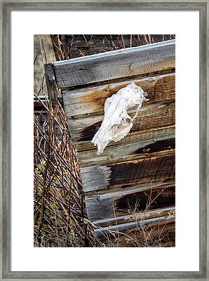 Cowboy Cabin Adornment Framed Print