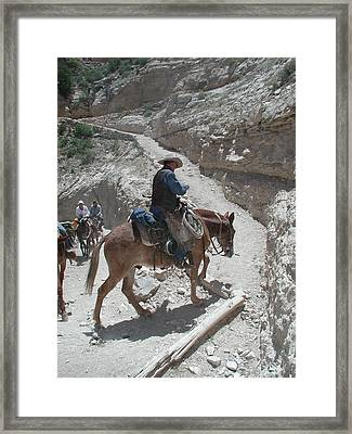 Framed Print featuring the photograph Cowboys In The Canyon by Nancy Taylor