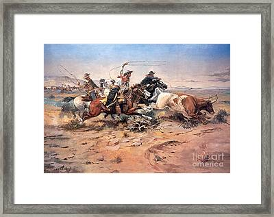 Cowboys Roping A Steer Framed Print by Charles Marion Russell
