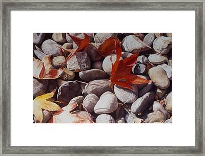 Cowper Street #2 Framed Print