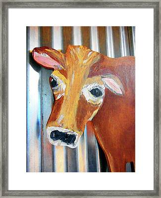 Cows 4 Framed Print