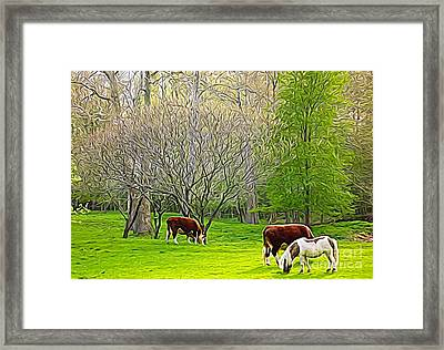 Cows And Pony Grazing Expressionistic Effect Framed Print