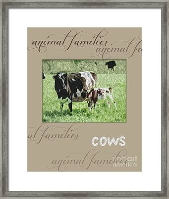 Cows-animal Family Framed Print