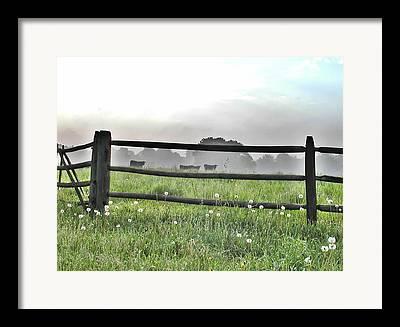 Erdenheim Farm Framed Prints