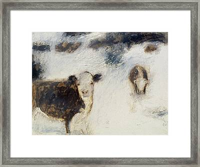 Cows In Snow Framed Print by Ruth Sharton
