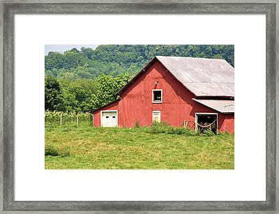 Cows In The Barn Framed Print by Jan Amiss Photography