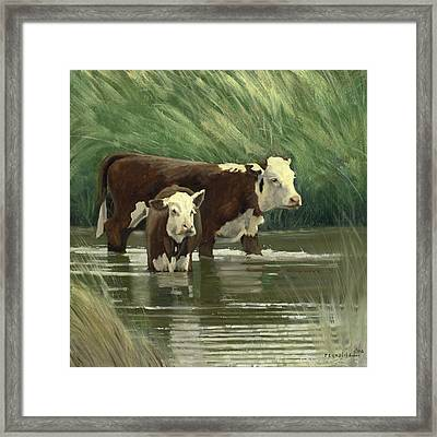 Cows In The Pond Framed Print by John Reynolds