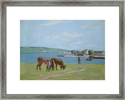 Cows On The Banks Of The Seine At Saint Mammes Framed Print by Alfred Sisley