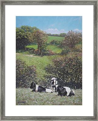 Framed Print featuring the painting Cows Sitting By Hill Relaxing by Martin Davey