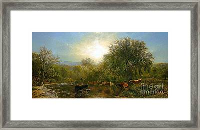 Cows Watering Framed Print by Celestial Images