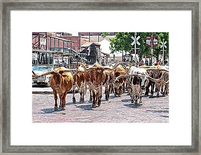 Cowtown Stockyards Framed Print