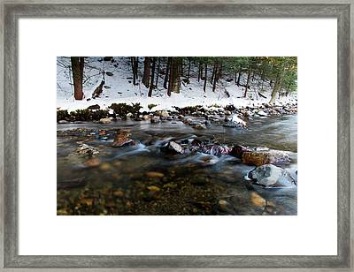 Coxing Kill In December #1 Framed Print by Jeff Severson