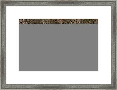 Framed Print featuring the photograph Coxing Kill In March #1 by Jeff Severson