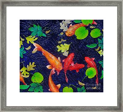 Coy Framed Print by Susan Clausen