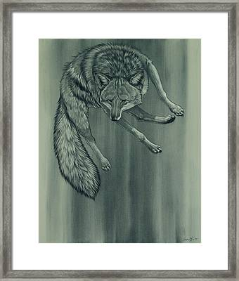 Coyote Framed Print by Aaron Blaise