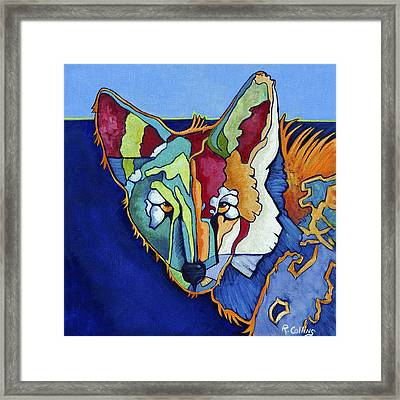 Coyote Blue Framed Print by Rose Collins