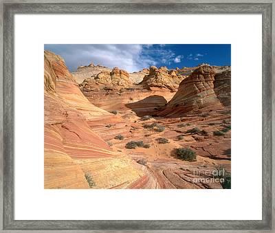 Coyote Buttes, Arizona Framed Print by Adam Jones