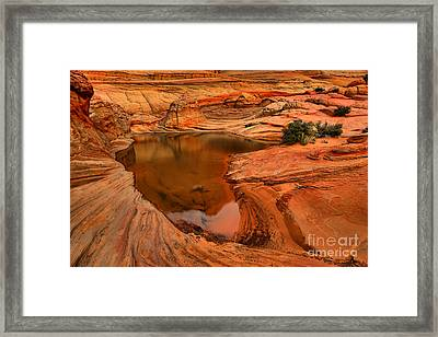 Coyote Buttes Desert Oasis Framed Print by Adam Jewell