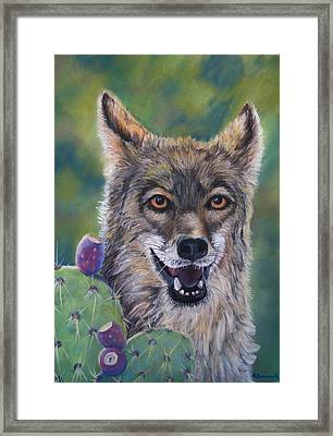 Coyote And Cactus Framed Print by Tracey Hunnewell