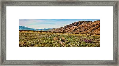 Coyote Canyon Meadow View Framed Print
