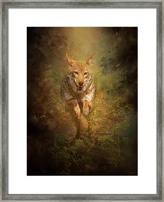 Coyote Energy Framed Print