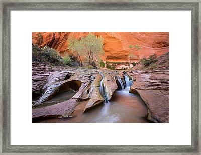 Coyote Gulch Framed Print