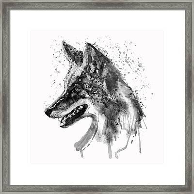 Coyote Head Black And White Framed Print