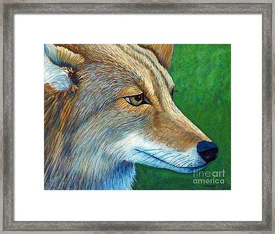 Coyote Logic Framed Print by Brian  Commerford
