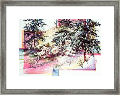 Coyote Pups Framed Print
