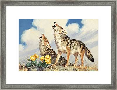 Coyotes Howl To The Setting Sun Framed Print by Walter A. Weber