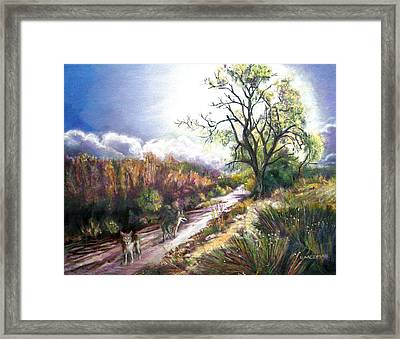 Coyotes In Placerita Canyon Framed Print by Olga Kaczmar