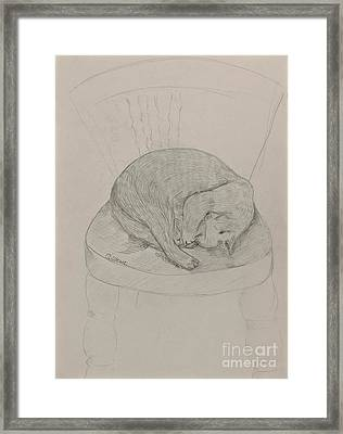 Cozy Cat Framed Print by Caroline Street