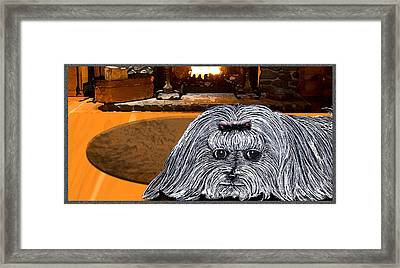 Framed Print featuring the drawing Cozy Maltese by Michelle Audas