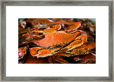 Crab Boil Framed Print by Karen Wiles