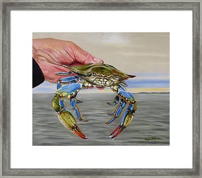 Crab Fingers Framed Print by Phyllis Beiser