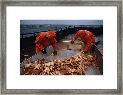 Crab Fishermen Sorting Their Catch Framed Print