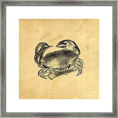 Crab Vintage Framed Print by Edward Fielding