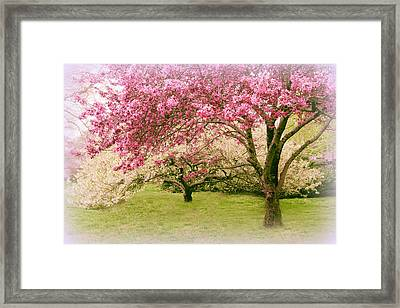 Framed Print featuring the photograph Crabapple Confection by Jessica Jenney