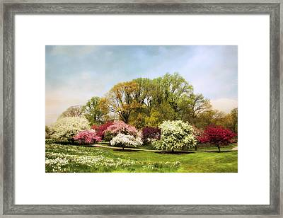 Crabapple Grove Framed Print by Jessica Jenney