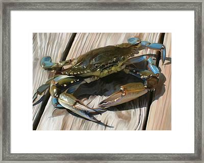 Crabbie Framed Print