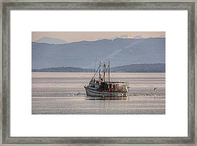 Crabbing Framed Print by Randy Hall