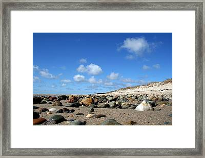 Crab's Perspective Framed Print by Doug Hockman Photography